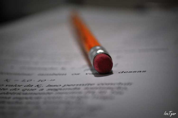 כתיבת עבודות אקדמיות במשפטים